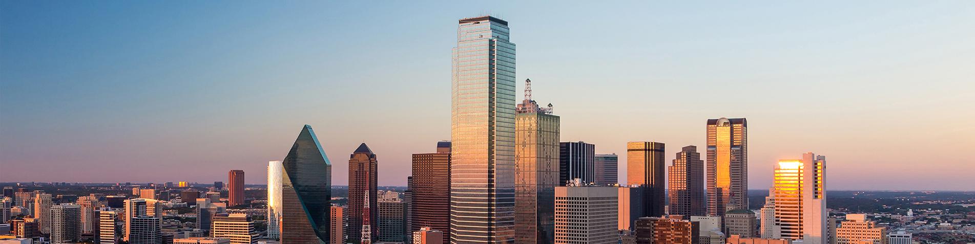 City of Dallas banner